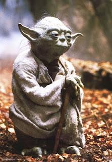SEO Yoda | click-finders.com